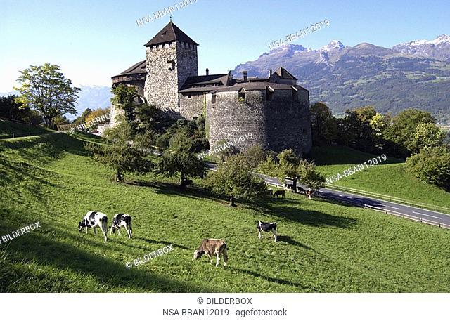 Vaduz Liechtenstein castle