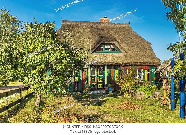 Typical house with thatched roof in Born on the Darss, peninsula Fischland-Darss-Zingst, County Vorpommern-Ruegen, Mecklenburg-Western Pomerania, Germany