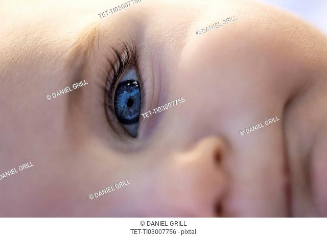 Close-of baby boy's (6-11 months) blue eye