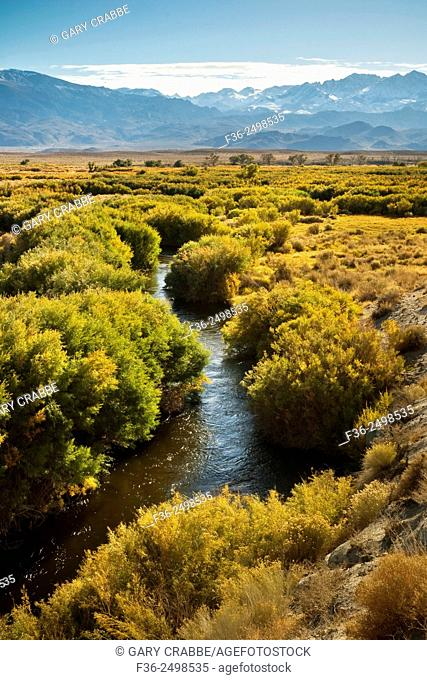 Owens River in the Owens Valley, near Bishop, Eastern Sierra, California