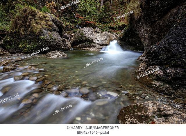 Ostertalbach in Ostertaltobel, stream with small waterfall, autumn, Gunzesried-Säge, Allgäu, Bavaria, Germany