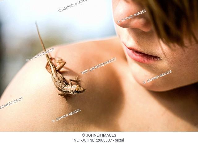 Lizard on boys shoulder