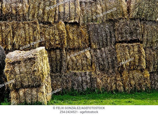 Close-up, hay bales at Segovia, Castile and Leon, Spain