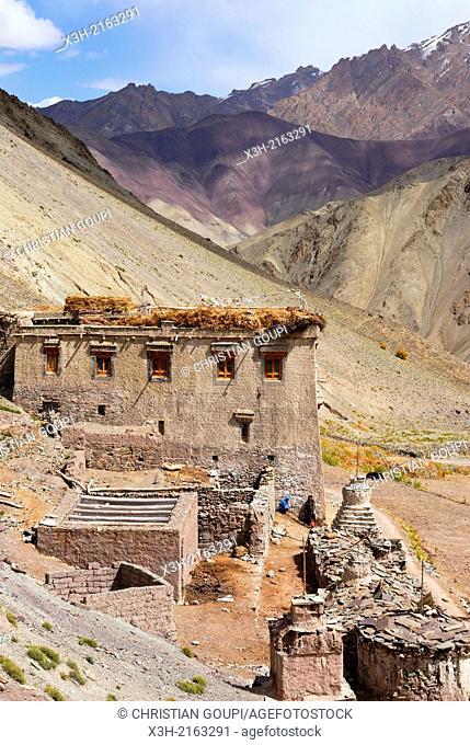 Yurutse valley, Hemis National Park, Ladakh region, state of Jammu and Kashmir, India, Asia