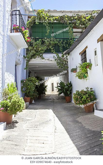 Traditional alley called tinao . Unique feature architecture that connects buildings on both sides of narrow village streets. Capileira town