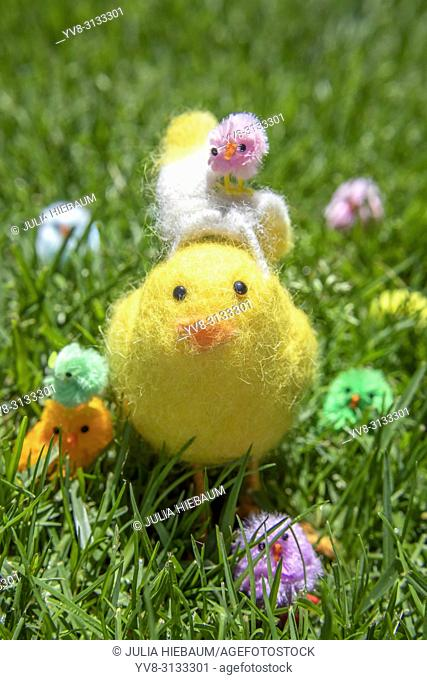 Cute Easter chicks in the garden