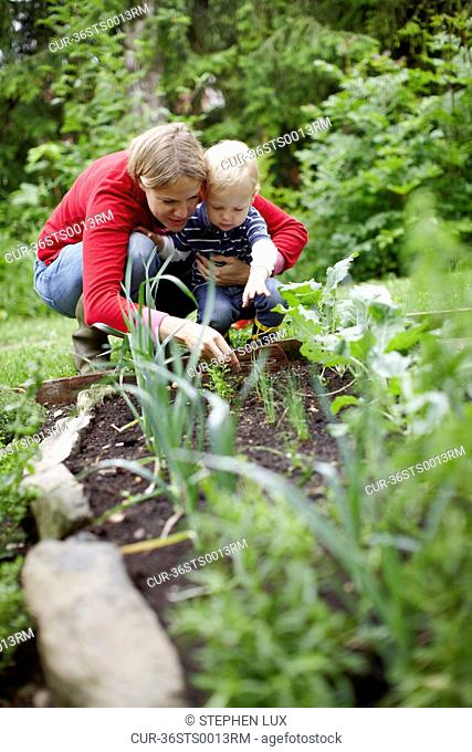 Mother and son examining plants