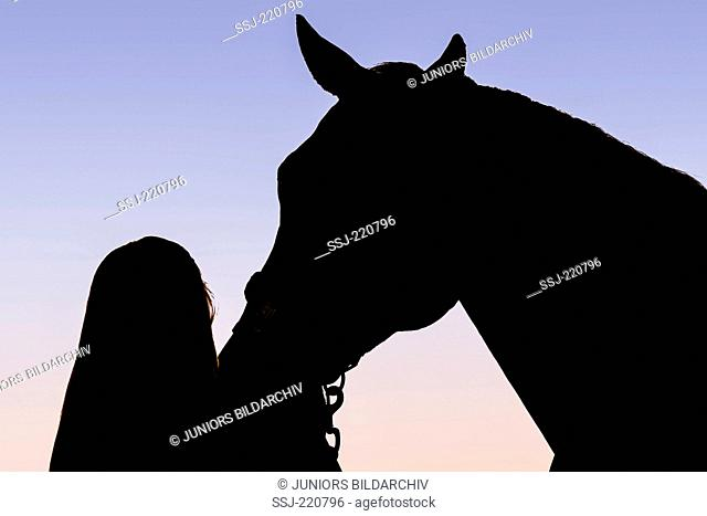American Quarter Horse. Woman fondling mare, silhouetted against the sky. Germany