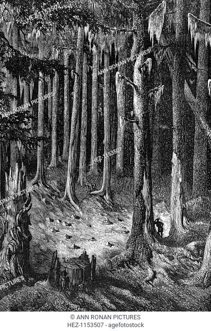 Yosemite National Park, USA, c1875. On the way through the forest to the Big Trees. Yosemite was designated as a state park in 1864