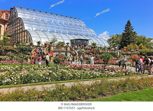 Palm house next to Castle Church of St. Marien on Mainau Island, Lake Constance, Konstanz district, Baden-Wuerttemberg, Germany, Europe, Europe