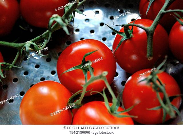 Red vine tomatoes in a sieve during washing