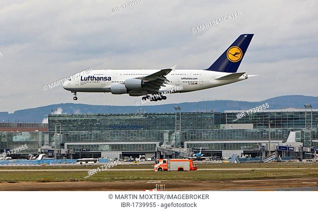 Lufthansa Airbus A380 landing at Frankfurt Airport, a fire truck driving below the Airbus, Hesse, Germany, Europe