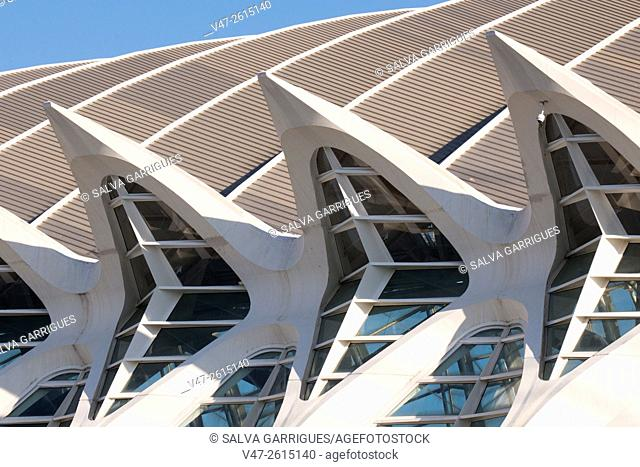 Detail of the facade of Principe Felipe Museum, of City of Arts and Sciences, of Valencia, Spain