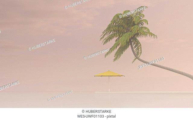 Coconut palm and sunshade in haze, 3D Rendering
