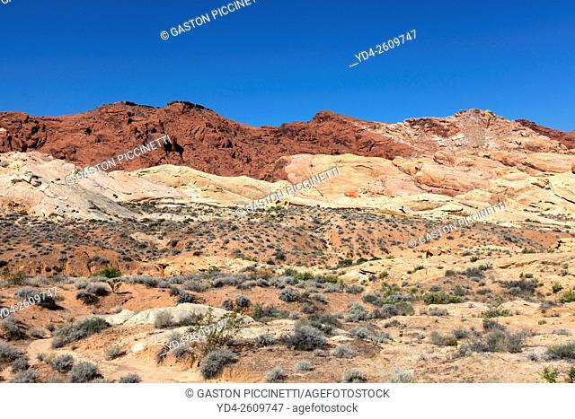 Diferent colours in the rocks, Valley of Fire State Park, Nevada, USA
