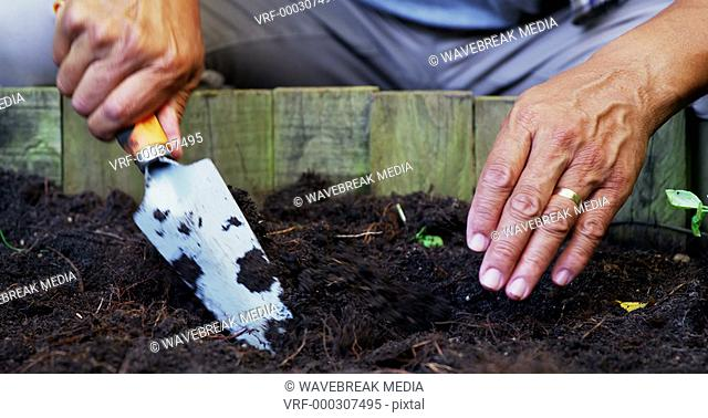 Senior man digging in the soil to dig plant