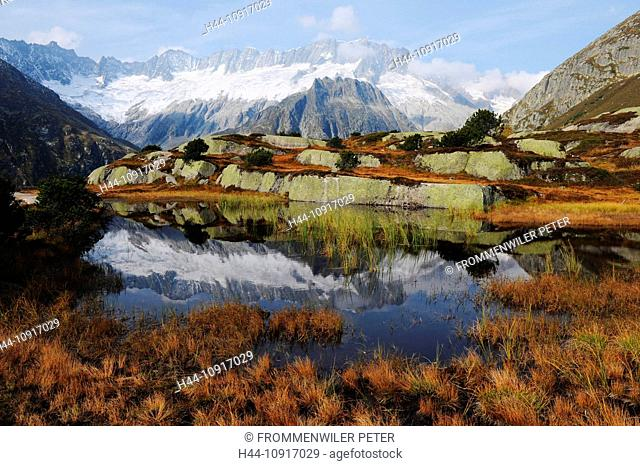 Mountain lake, Switzerland, Uri, Alps, mountains, glaciers, Göscheneralp, Göscheneralpsee, autumn, water, lake, dam, flowers, mountain pastures