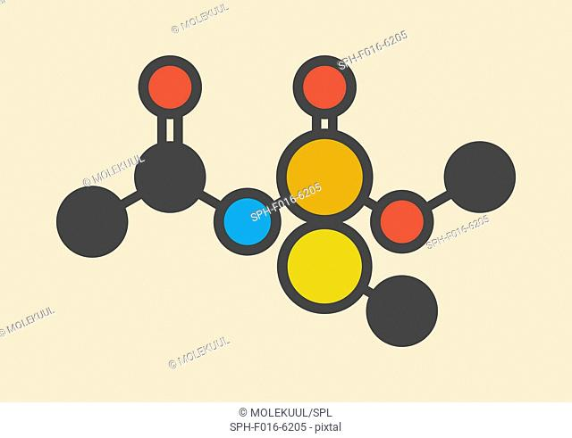Acephate insecticide molecule. Stylized skeletal formula (chemical structure). Atoms are shown as color-coded circles: hydrogen (hidden), carbon (grey)