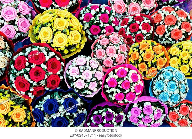 Many colors of the roses