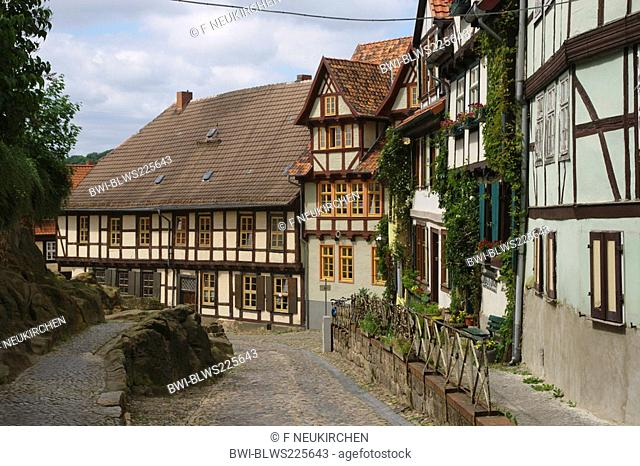 alley at the Schlossberg, Germany, Saxony-Anhalt, Harz, Quedlinburg