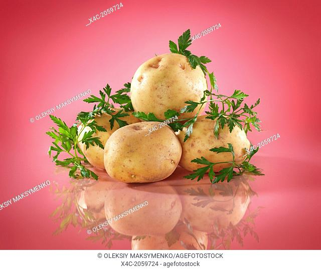 Colorful food still life of potatoes and parsley isolated on bright pink background