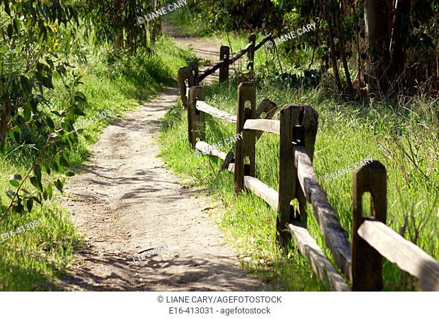 Path through countryside, California. USA
