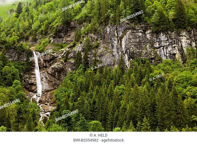 small waterfall at wooded rocks, Austria, Tyrol, Lechtal