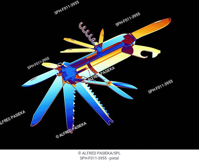 Computer artwork of a penknife simulating X-ray. Numerous blades and other tools are seen folded out from the body of the knife