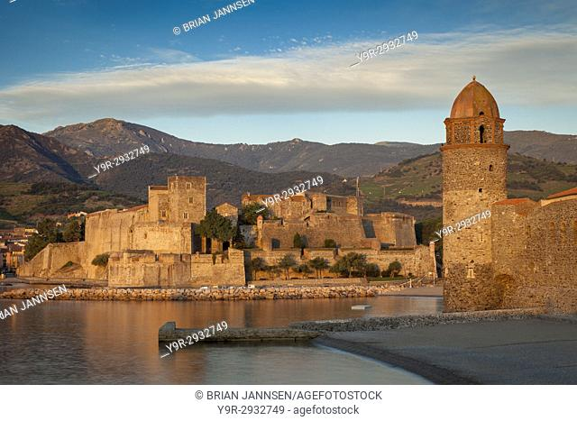First light of dawn over town of Collioure, Pyrenees-Orientales, Languedoc-Roussillon, France