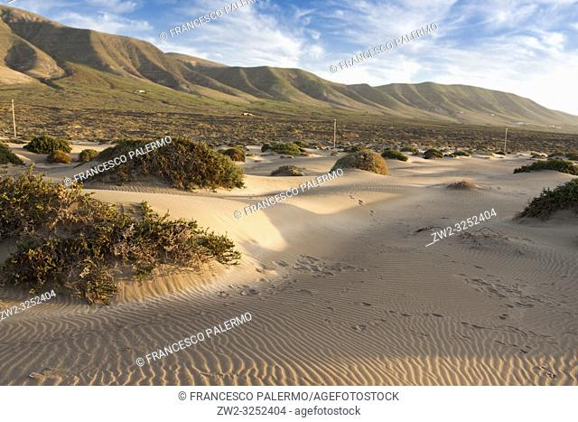 Features sand dunes of the bay. Famara, Lanzarote. Spain