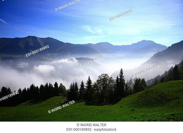 Nebel über Dornbirn