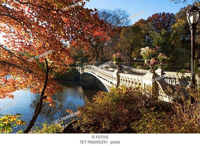 Footbridge over lake in Central Park