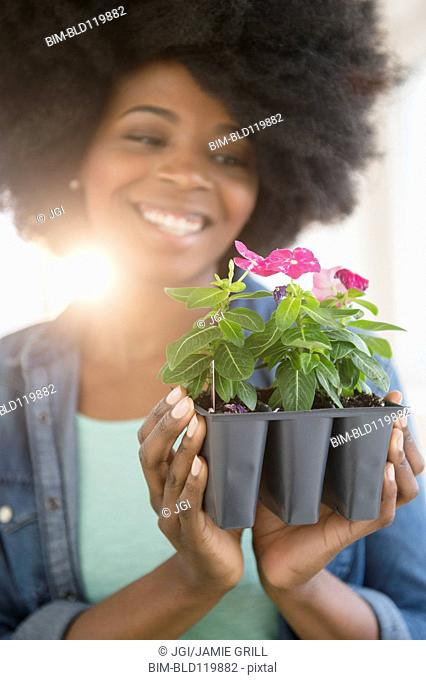 Mixed race woman holding potted flowers