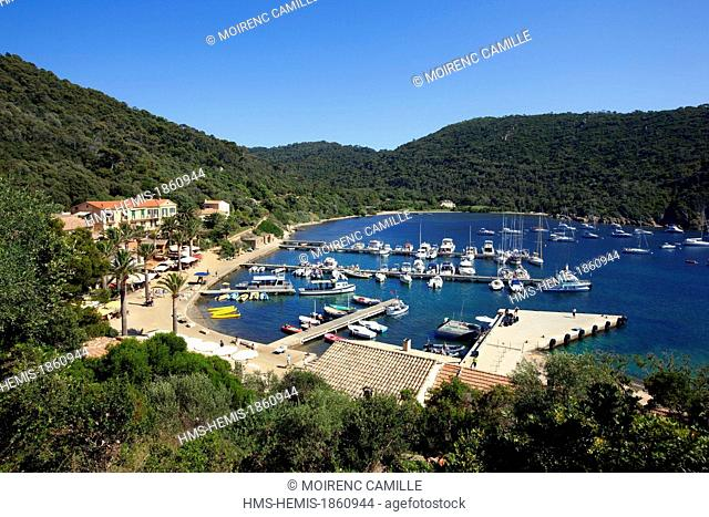 France, Var, Hyeres Islands, National Park of Port Cros island of Port Cros, the port and the village