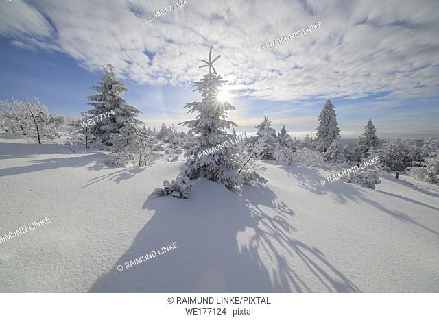 Snow covered winter landscape with sun, Mount Fichtelberg, Oberwiesenthal, Erzgebirge, Ore Mountains, Saxony, Germany, Europe