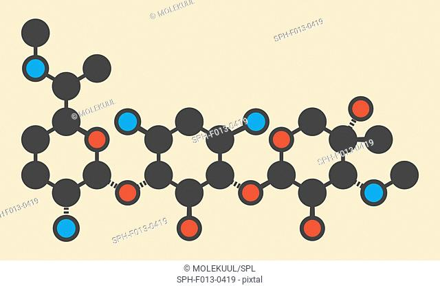 Gentamicin antibiotic drug (aminoglycoside class) molecule. Stylized skeletal formula (chemical structure). Atoms are shown as color-coded circles: hydrogen...