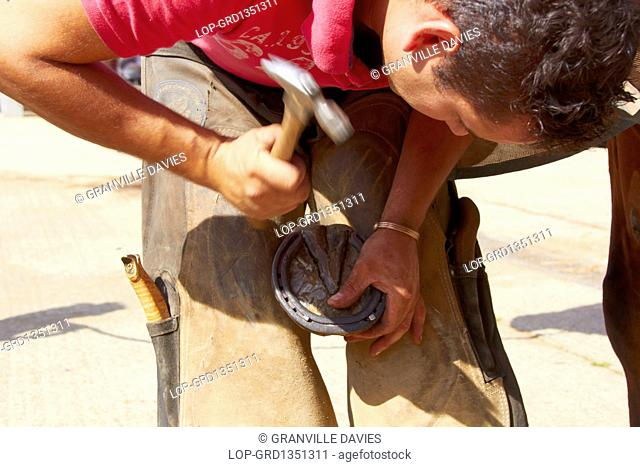 England, Kent, Paddock Wood. A farrier securing a horseshoe