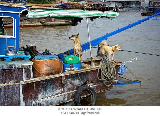 Floating Market, Cai Rang, Mekong delta, Vietnam