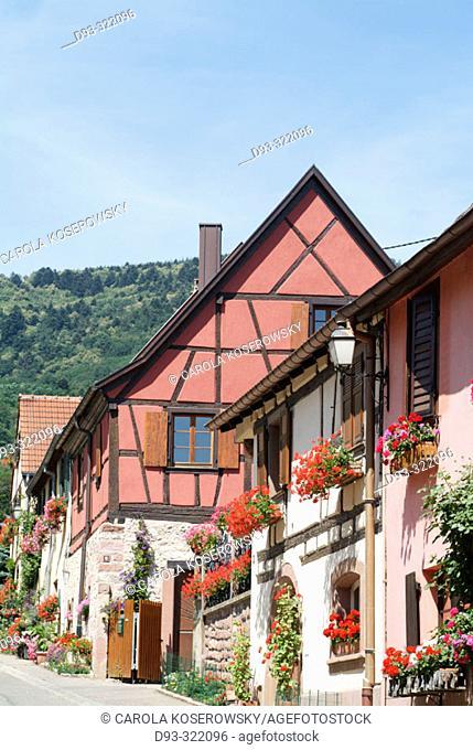 Otrott. Alsatian wine road. France