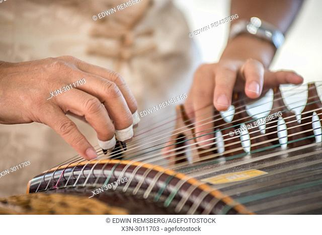 Detailed look of woman plucking strings of the historically rich instrument the guzheng, Greensboro, North Carolina. USA
