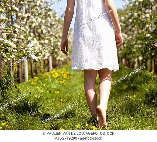 Helmond, Netherlands, a lovely girl walks barefoot between blossom in an orchard