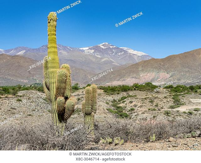 Nevado de Cachi,a vulcanic mountain range higher than 6000m, near small town Cachi in the region Valles Calchaquies, province Salta