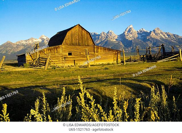 Barn with the Tetons in the background, Jackson, Wyoming, USA