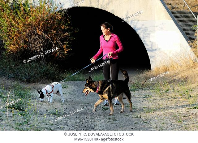 Woman walking her dogs early morning in front of flood control tunnel, Thousand Oaks, California, USA