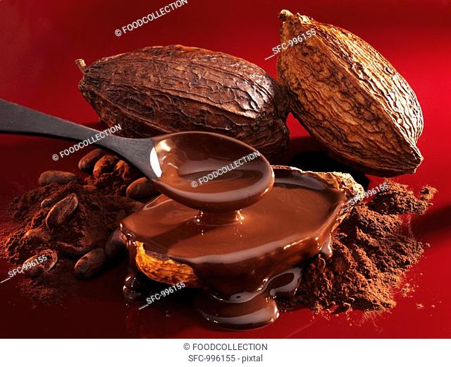 Chocolate sauce, cocoa powder, cocoa beans and cacao fruits