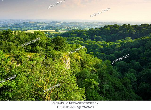 Summer evening view over Ebbor Gorge National Nature Reserve in the Mendip Hills, Somerset, England