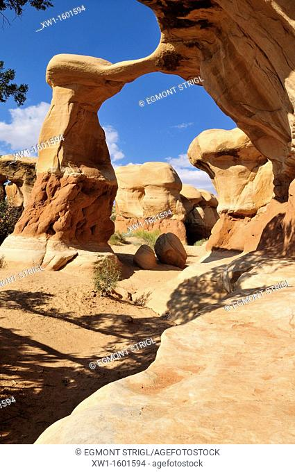 Metate arch and hoodoos at Devils Garden, Grand Staircase Escalante National Monument, Utah, USA, North America