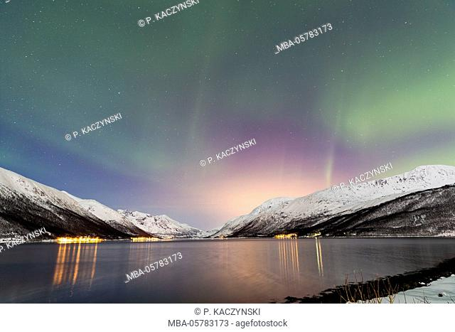 Aurora borealis above a fjord in wintry landscape, Tromsö, Troms, Norway, North Norway, North Scandinavia