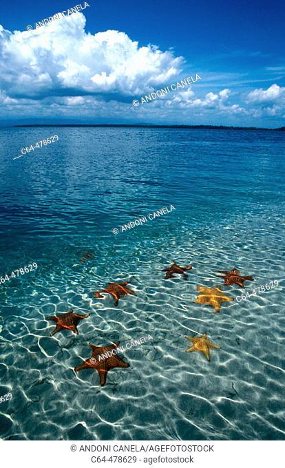 Colon Island. Bocas del Toro. Panama