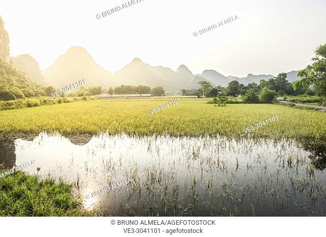 Sunset over rice paddies of Tam Coc in Trang An karst Landscape Complex (Ninh Binh province, Vietnam)